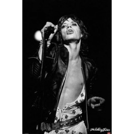 The Rolling Stones - Mick Jagger Icon