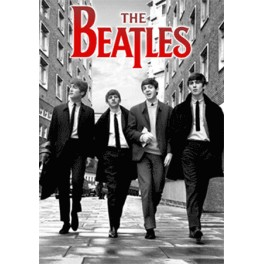The Beatles in London 3D Poster with Frame