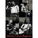 Red Hot Chili Peppers (Live)