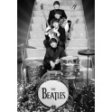 Beatles on Stage 3D Framed Poster
